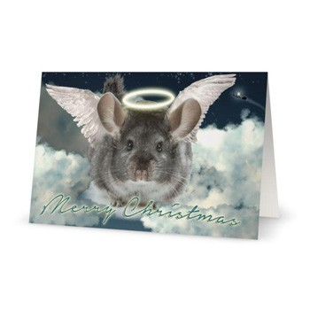 Chinchilla Holiday Angel Christmas Cards - Pack of 5